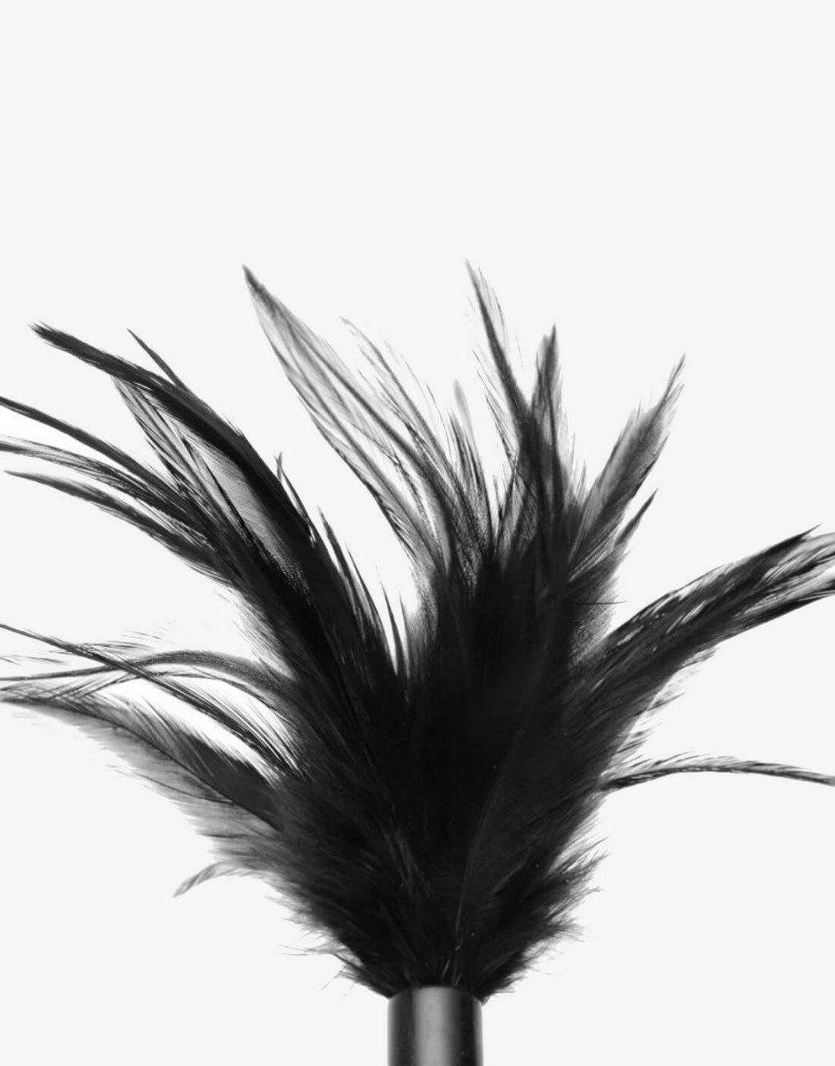 Le plume fjerpen-1032