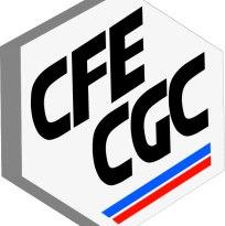 Logo CFECGC 3D HD