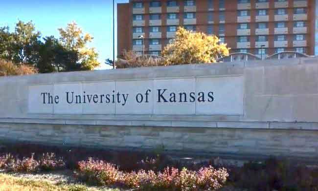 University of Kansas ku blackboard