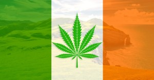 droga in Irlanda