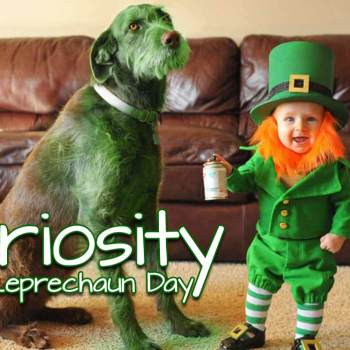 leprechaun-day-irlanda
