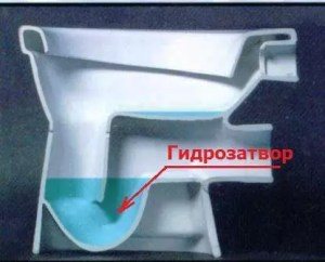 гидрозатвор унитаза