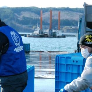 震災支援 漁業支援 (15)