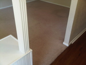 Carpet After Home Carpet Cleaning