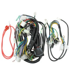 wiring harness 50cc scooter vip gy6 50cc scooter wiring harness 50cc scooter wiring harness [ 1600 x 1600 Pixel ]