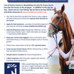 Tips For Lesson Barns During Covid United Horse Coalition