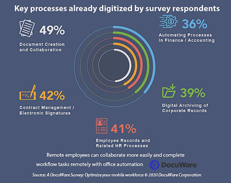 Percentage of processes digitized