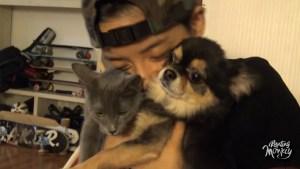 Amber, f(x), JackJack, JJ, Tuna, K-Pop, Pets