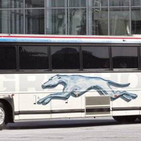 Greyhound Is Choosing To Let Border Patrol Demand Its Passengers' Papers