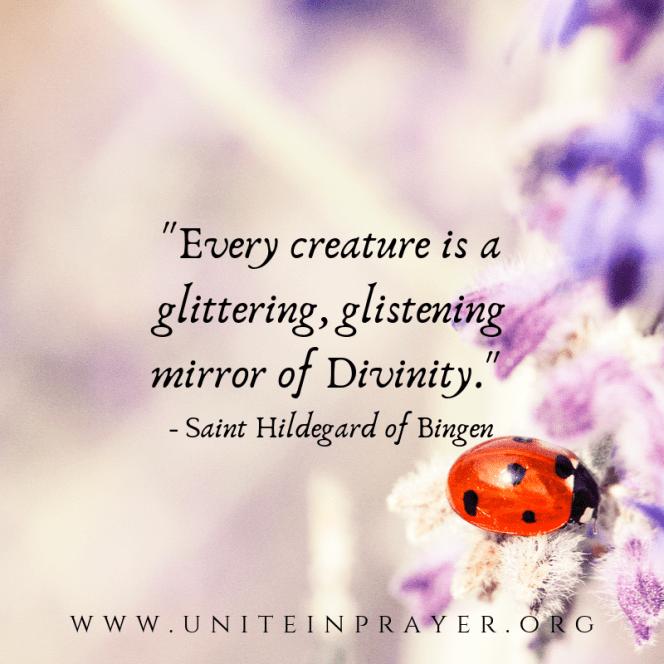 _Every creature is a glittering, glinstening mirror of Divinity._ - Saint Hildegard of Bingen