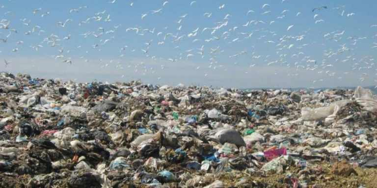 The Minister of Local Affairs and the Environment: Tunisia is going toward the reuse of waste