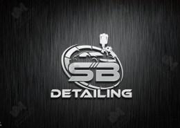 Professional car detailing logo design
