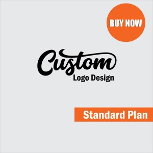 Custom-Logo-Design-standard-Plan