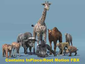 African Animal Pack 2