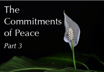 The Commitments of Peace – Part III