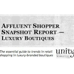 Affluent Shopper Snapshot Luxury Boutiques