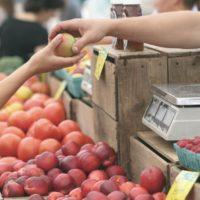 pexels-photo-95425 green grocer