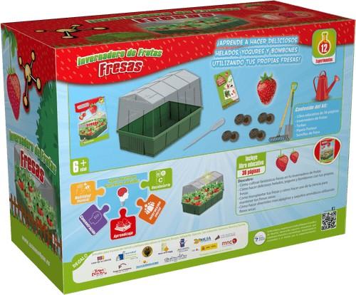 Invernadero de Frutas - Fresas