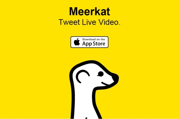 meerkat-screenshot-1