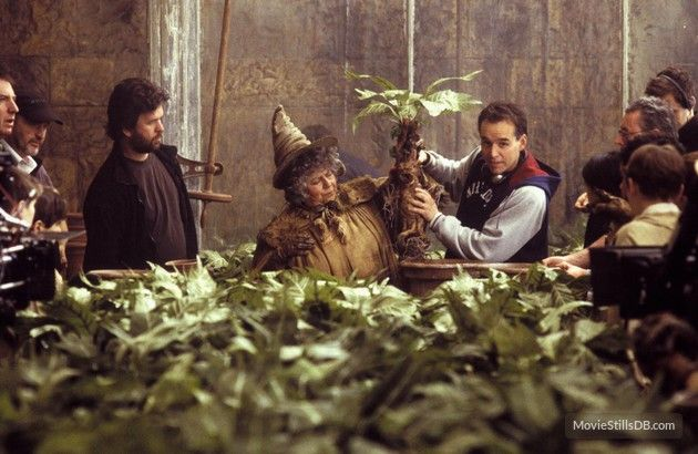 behind the scene harry potter - sprout