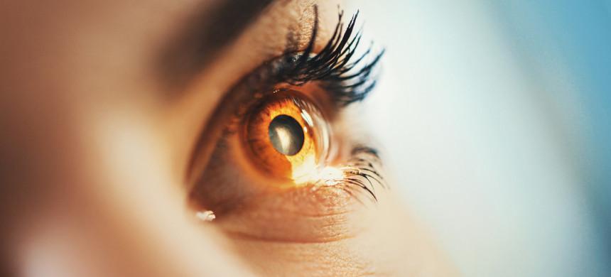 Participe de la limpieza de los ojos de la fe, en el Centro de Ayuda Universal