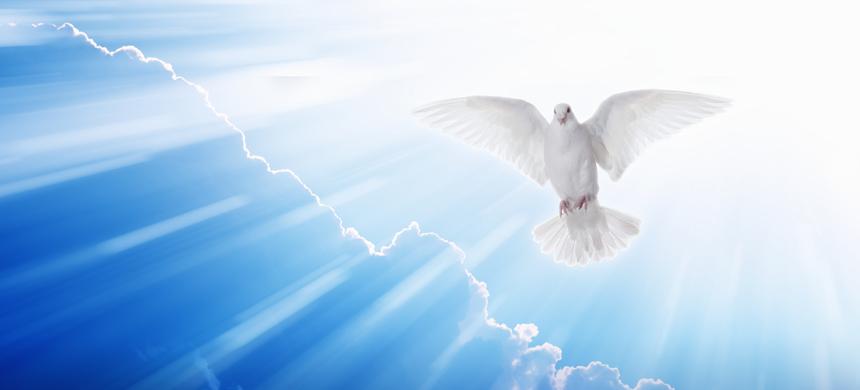 ¿Por qué necesitamos al Espíritu Santo?