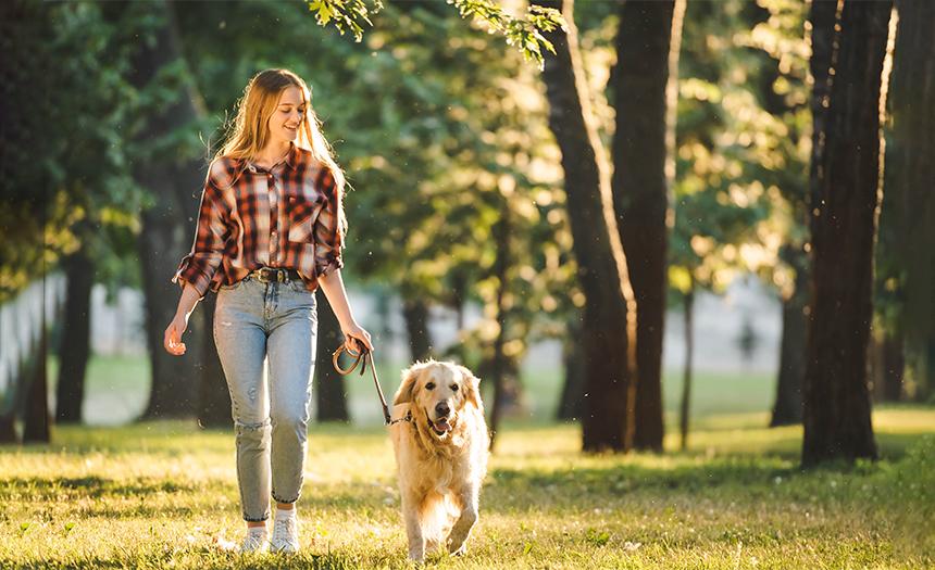 Beneficios de salir a caminar con tu mascota