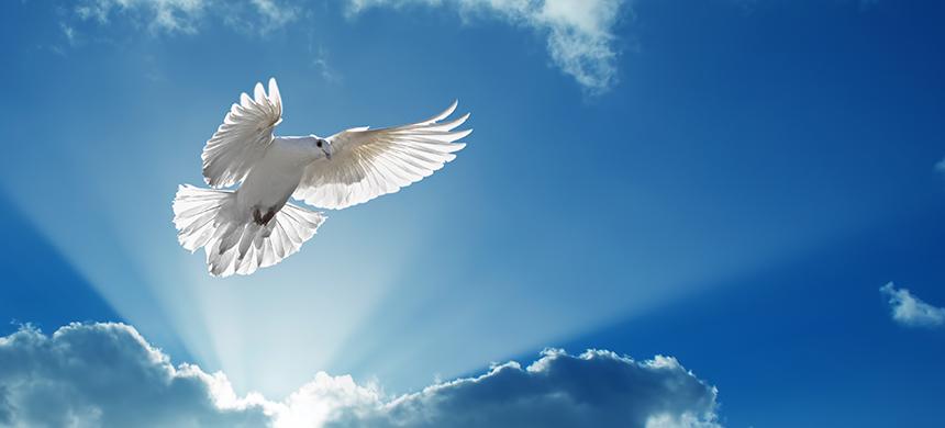¿Recibirás el Espíritu Santo en esta ocasión?