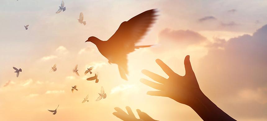 27 cosas que le quitan la paz a una persona