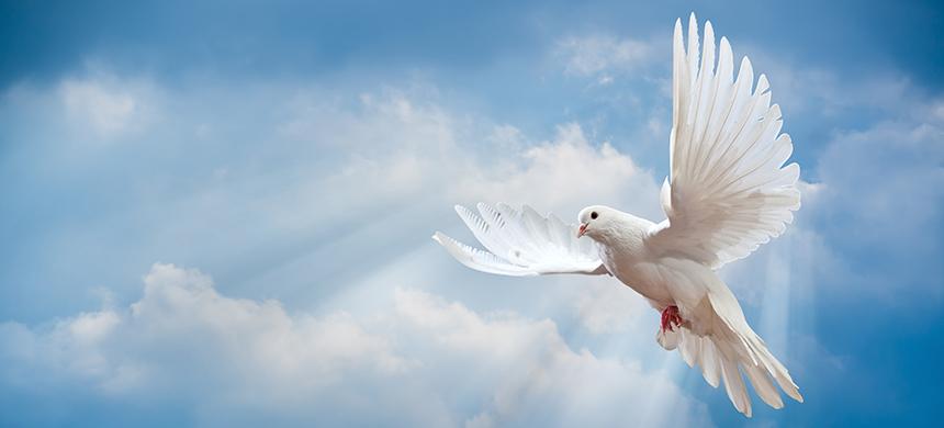 Las 7 cualidades del Espíritu de Dios