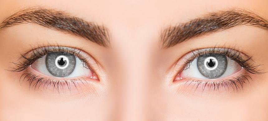 ¿Cómo han sido tus ojos?