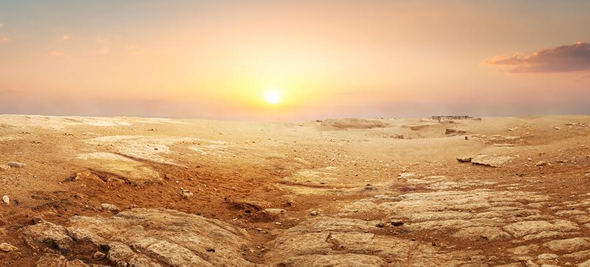 ¿Qué hacer cuando los desiertos llegan a nuestra vida?
