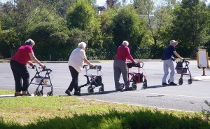 Four women using wheelie walkers crossing the road