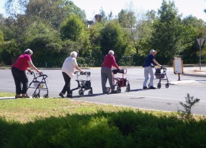 Four older women using wheelie walkers are crossing the road in single file. Accessible transport measuring tool.