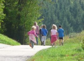 A group of children are walking along a path in a nature park.