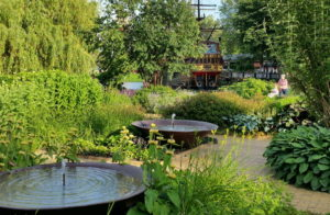 A garden with water features and lots of plantings around a curving footway. In the background a woman is being pushed in a wheelchair.