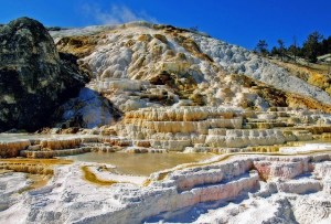 Mammoth Hot Springs. Rocky terraces formed by yellow sulphur stand in front of a bright blue sky.