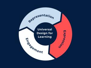 Three principles of UDL - expression, representation, engagement.