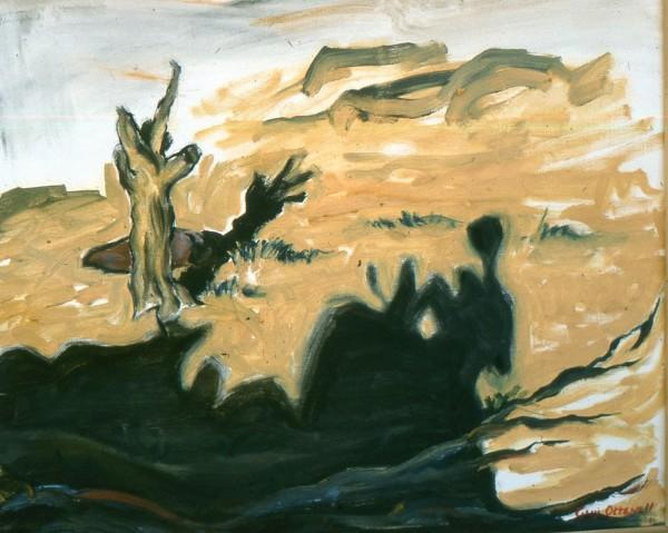 shadowNavajolandSlide