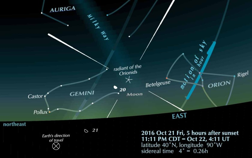 Sky scene 2016 October 21 with Orionid meteors