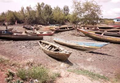 Le changement climatique en Guinée, quelles prévisions pour 2100 ?