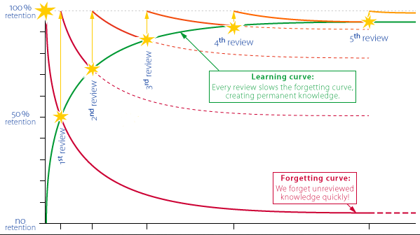 the Ebbinghaus forgetting curve
