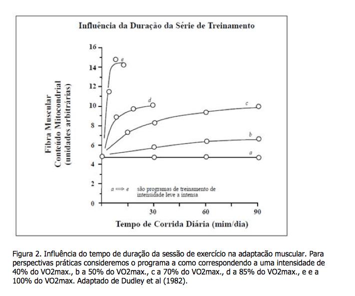 Sistema oxidativo ou aerobio