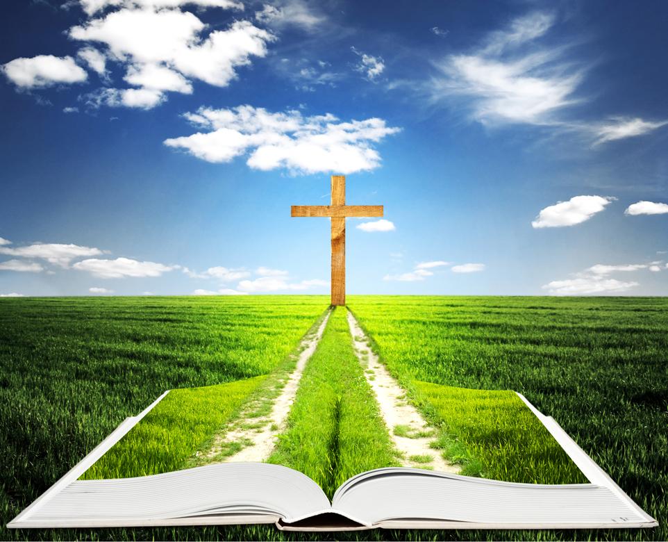 Renovando la Evangelización