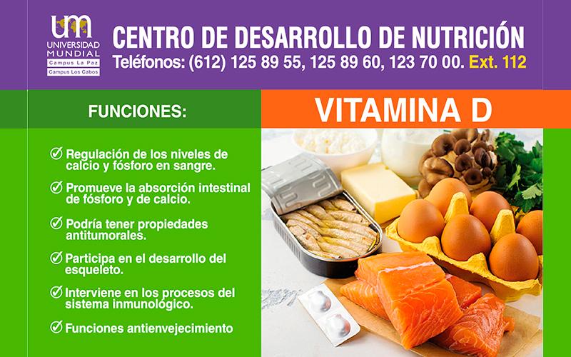 Centro de Desarrollo Nutrición