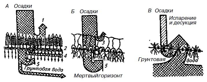 Типы водных режимов почв