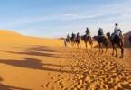 Ombre sul Sahara