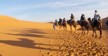Shadows over the Sahara