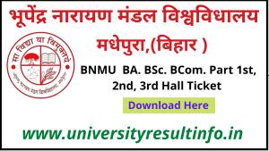 BN Mandal University