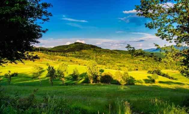 campo-italiano-olivos-montanas-georgicas